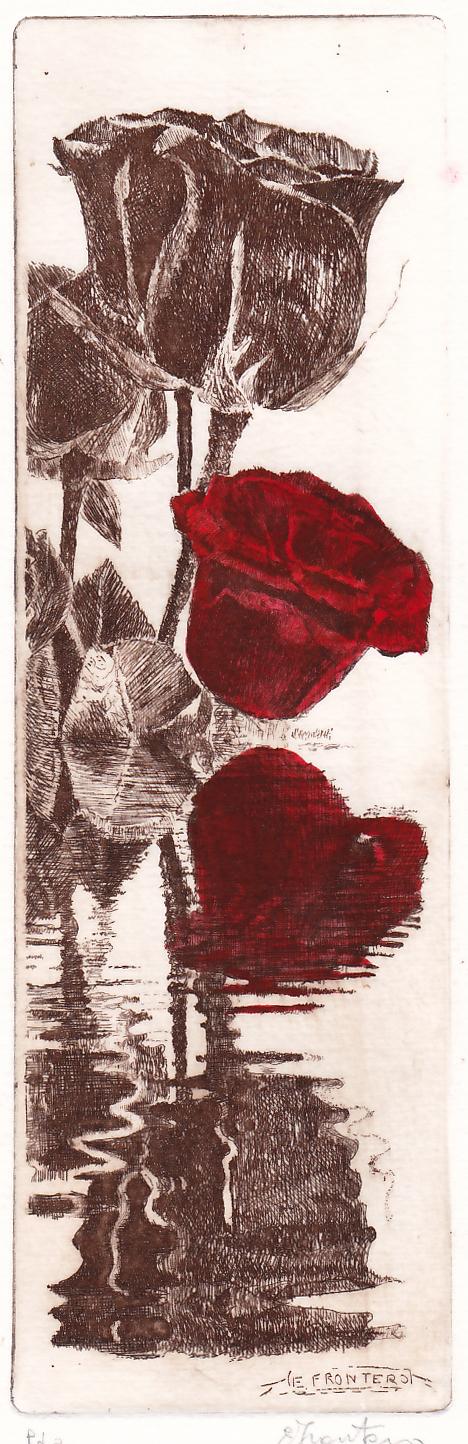 R.rosse